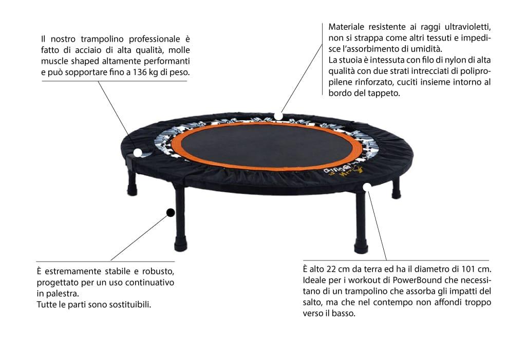 scheda trampolino elastico per palestre
